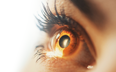 Ophthalmic banner image