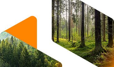 Forestry & Paper Manufacturing Chemical Distributor banner image