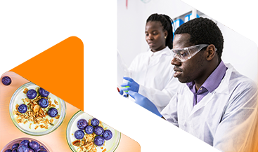 Imagen del banner de Mercados finales de productos químicos