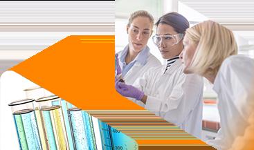 Image bannière Enzymes Novozymes® dans le traitement des protéines animales
