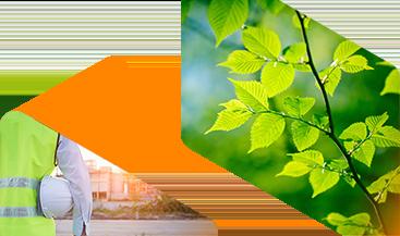 Sustainability banner image