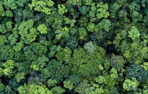 5 Takeaways for Rethinking Sustainability